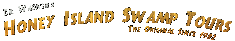 Honey Island Swampt Tours logo