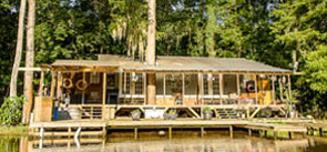 swamp wooden cabin